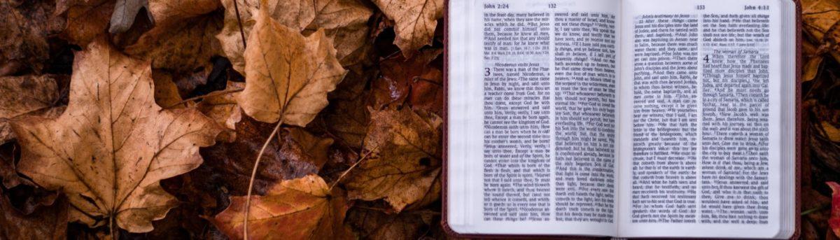 Biblia 2000